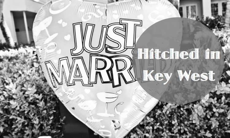 Hitched In Key West | Milk & Cookies Travel Bites