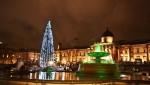 12 Christmas trees New York City to London