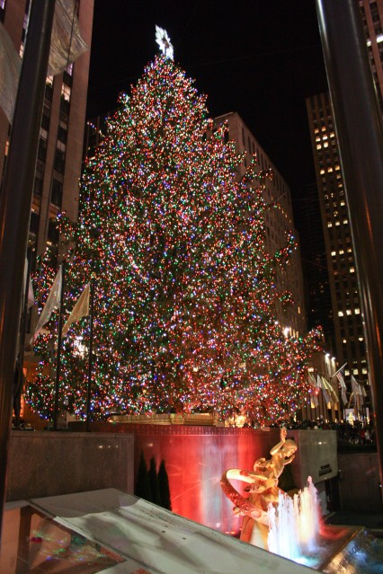 Christmas Trees in NYC and London    Milk and Cookies -1