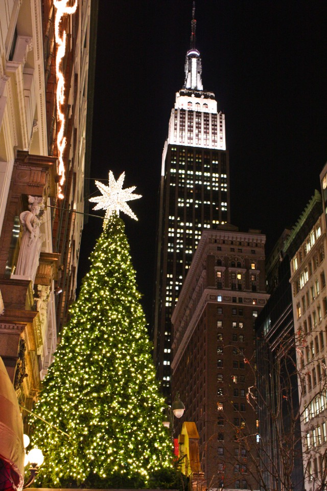Christmas Trees in NYC and London    Milk and Cookies -10