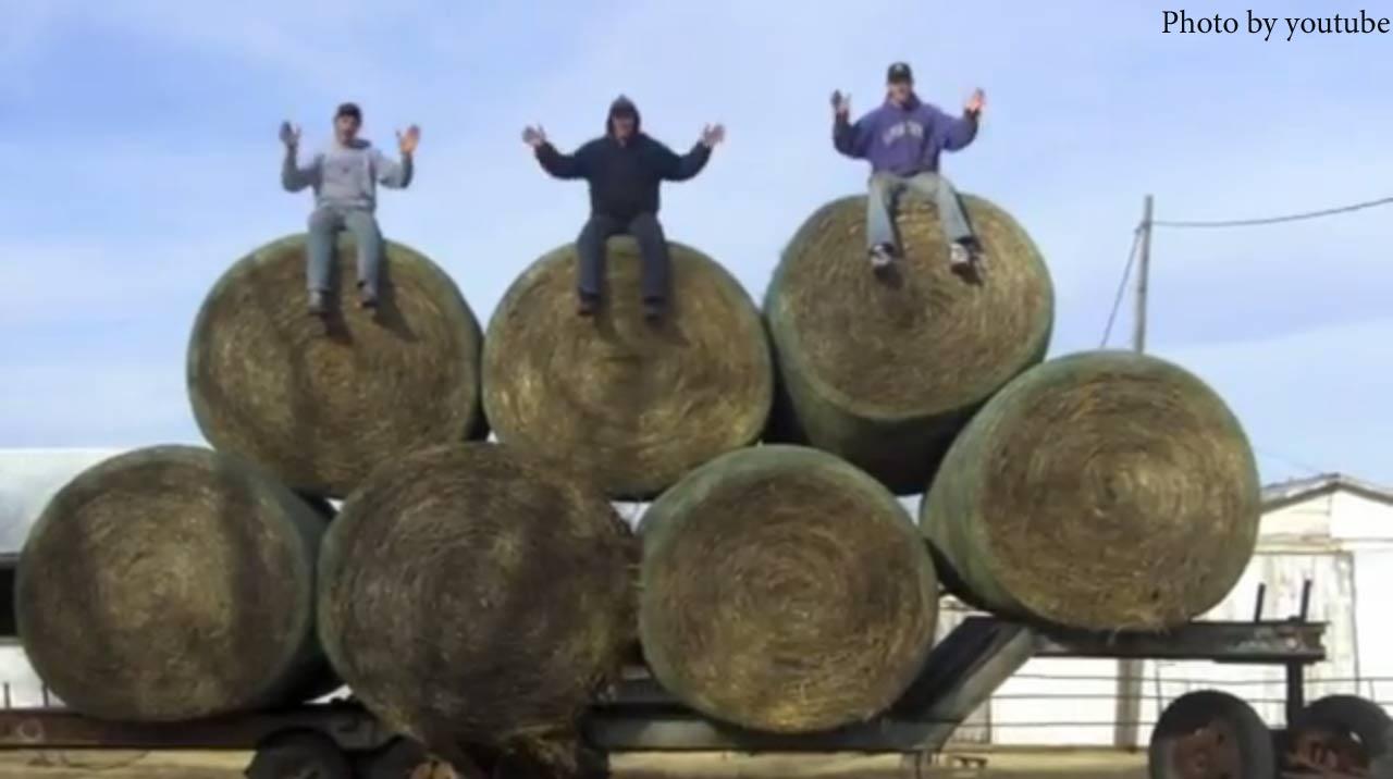 Farmer Style (gangnam style)